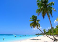 Tour to the Saona island