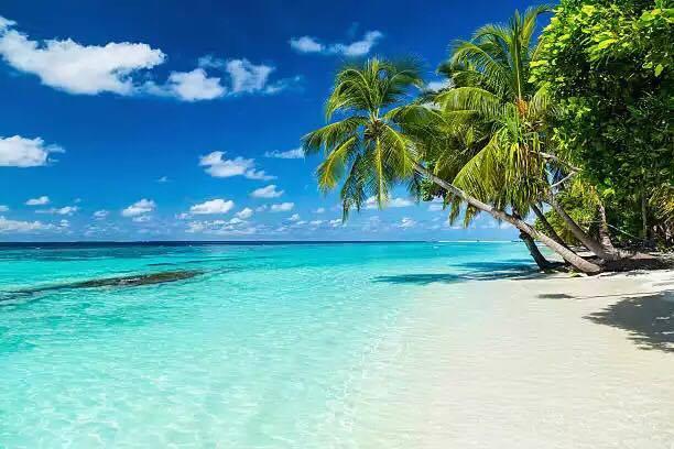 ostrov saona island iDominicana Dominicana 1