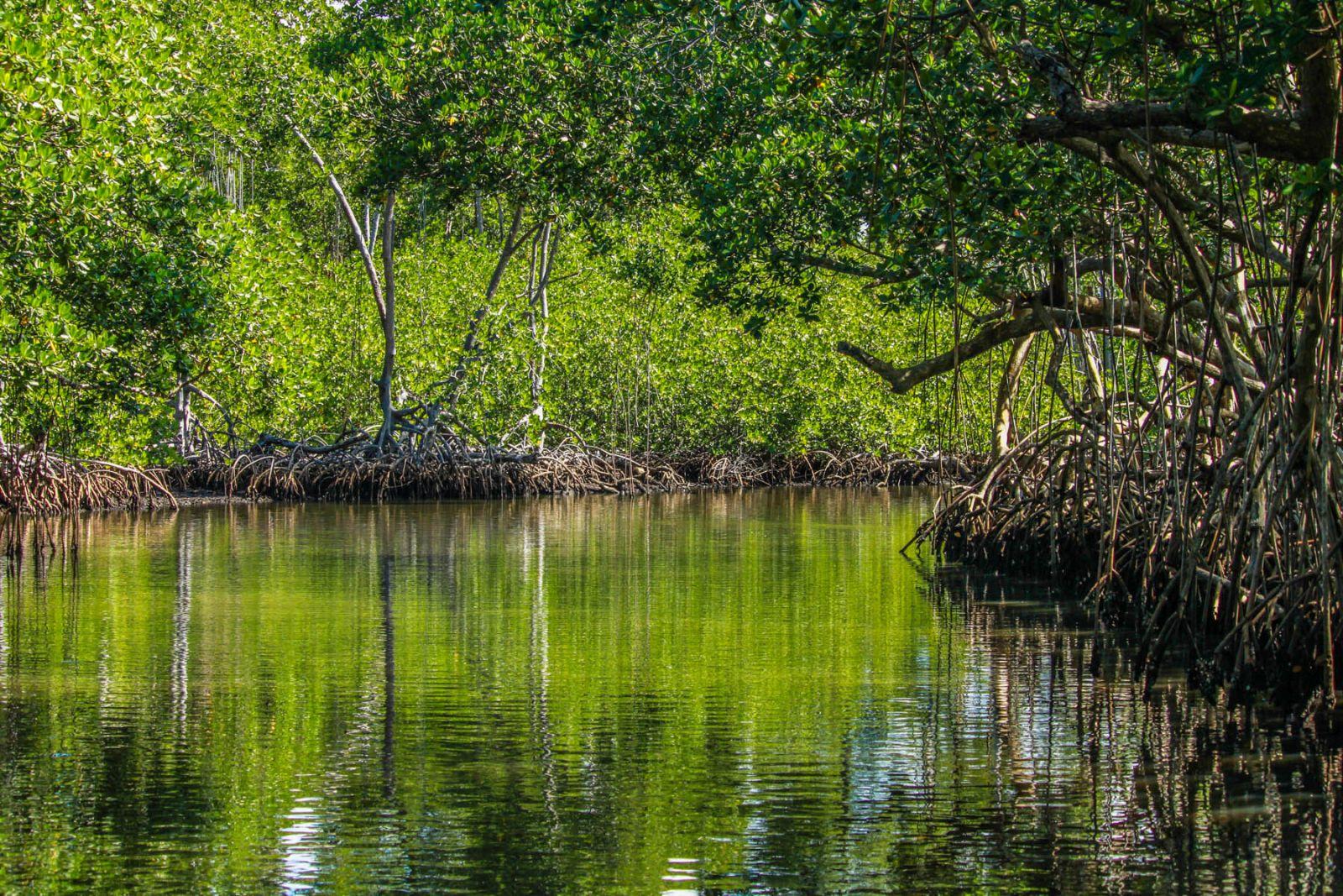 Доминикана. Парк Лос-Айтисес – земля тысячи островов и высоких гор