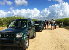 Джип-сафари 5 в 1 + гора Редонда $110