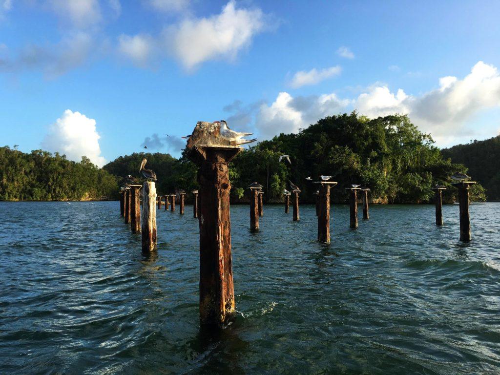 Все о Доминикане: парк Лос Айтисес. Видео