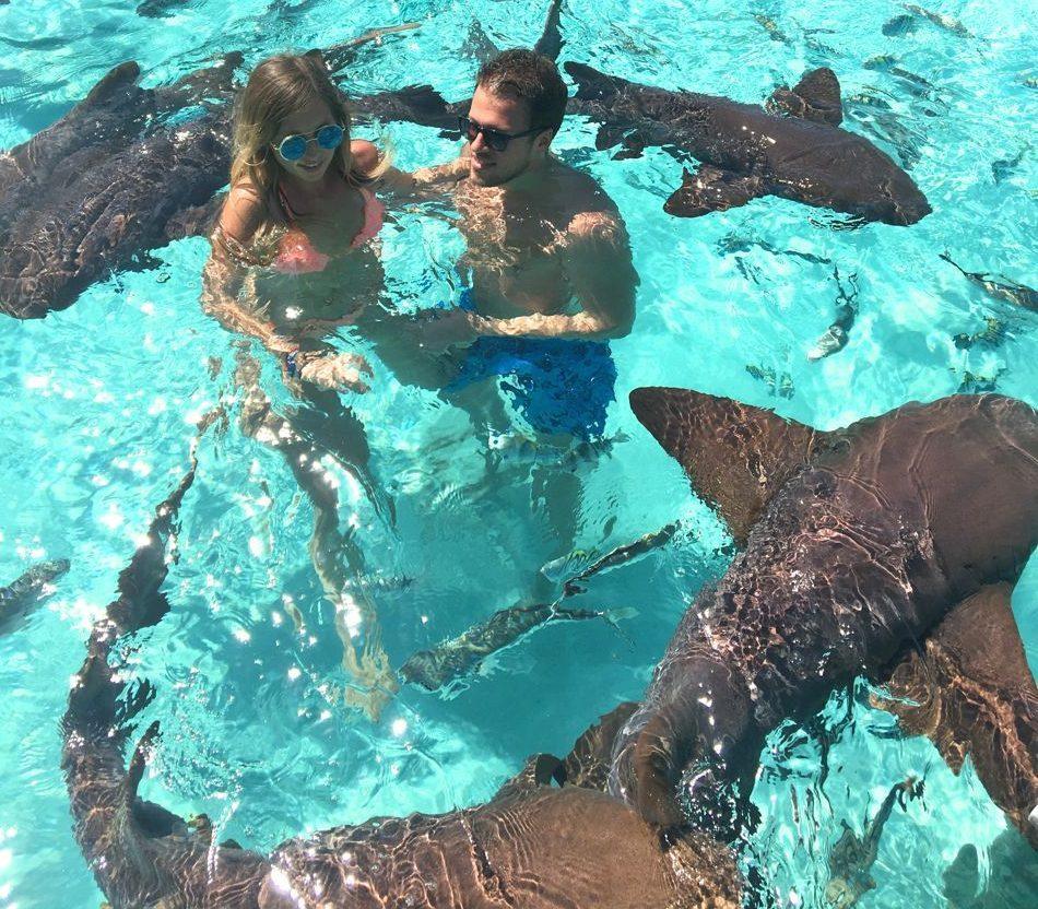 Jet boat: купание с акулами и скатами