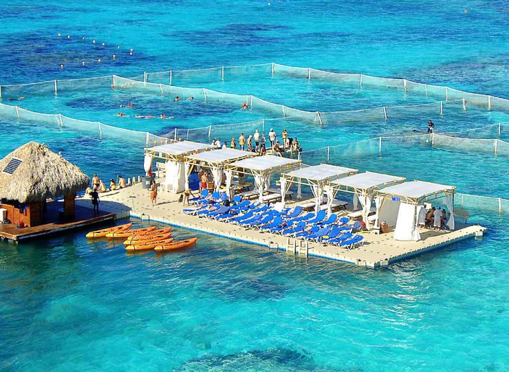 Скандал вокруг экскурсии Marinarium: у подводного парка конфискуют все имущество?