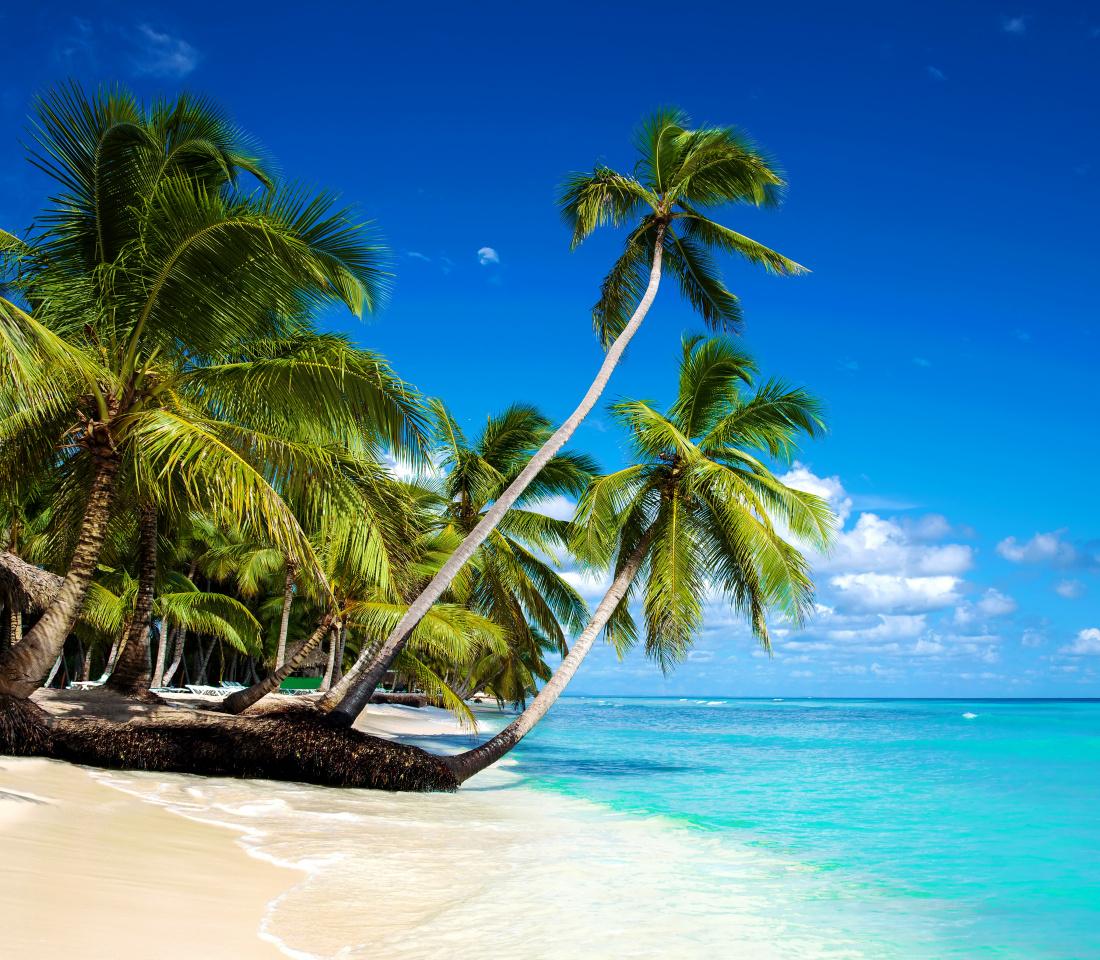 Tripadvisor признал Пунта-Кана лучшим курортом для путешествий