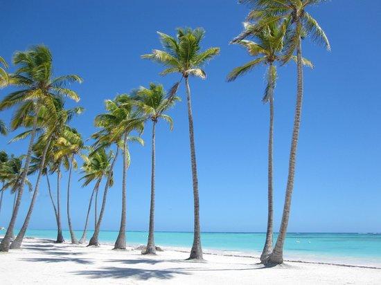 Пляжи Доминиканы вошли в рейтинг лучших от TripAdvisor