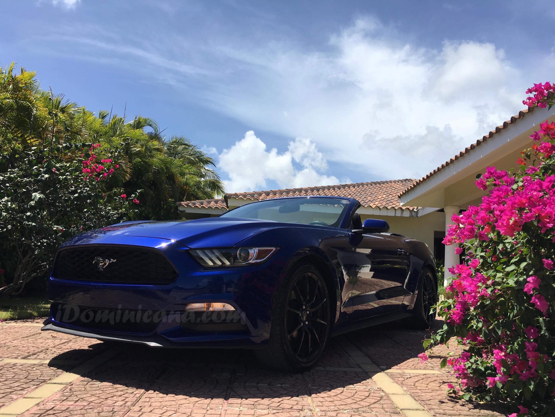 Новинка: сдается в аренду шикарный кабриолет Ford Mustang
