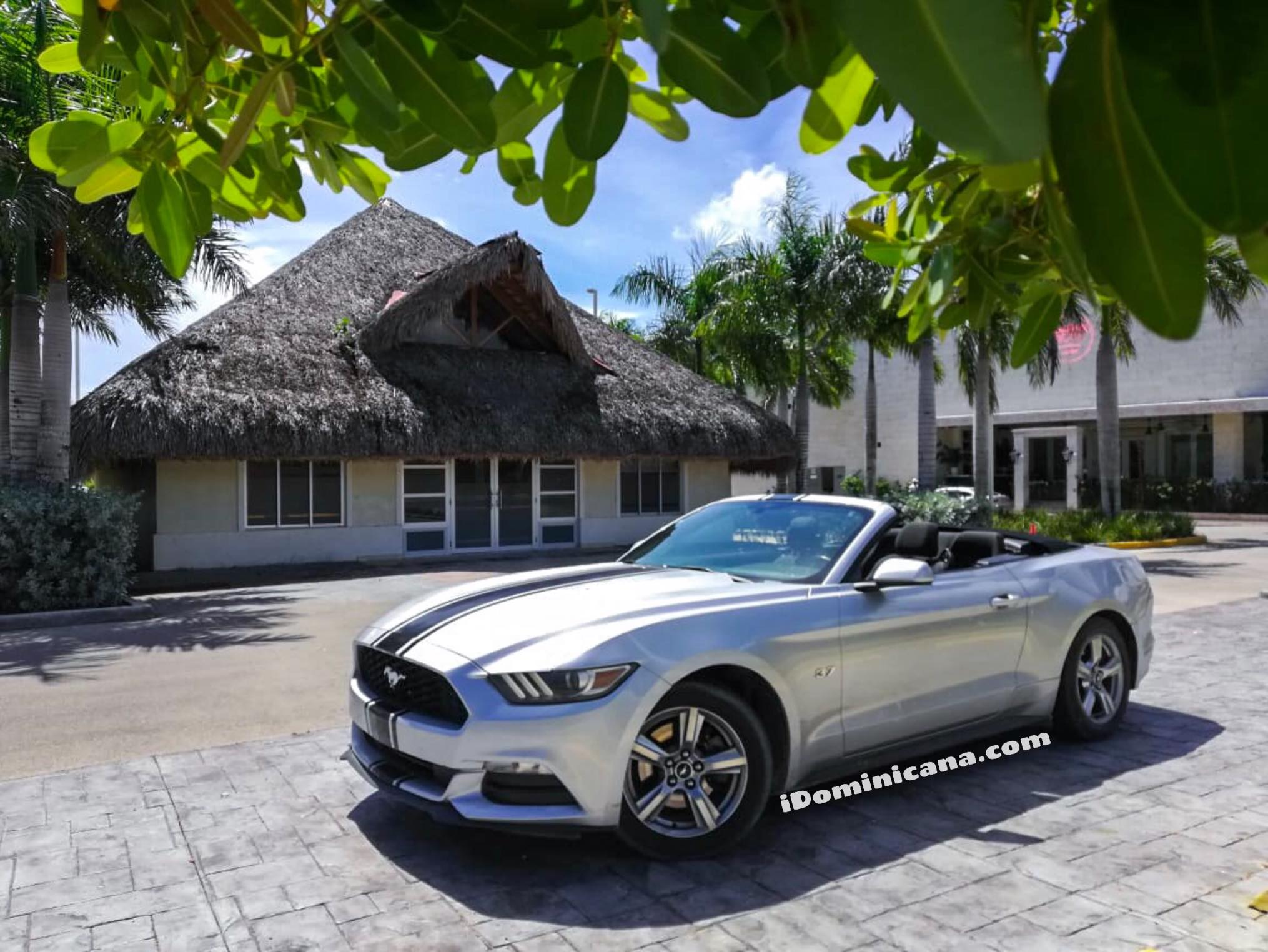 Аренда авто в Доминикане: кабриолет Ford Mustang 2016 iDominicana.com