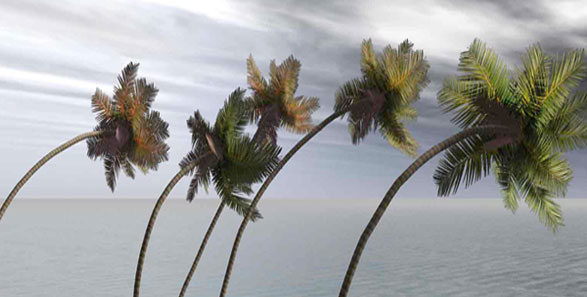 Из-за урагана в Доминикане отменяют экскурсии