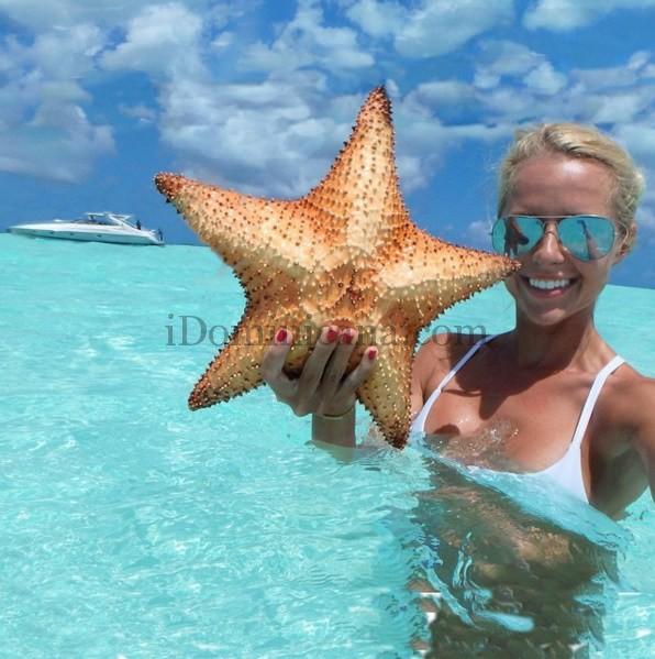 Твои селфи убивают морских звезд... Видео