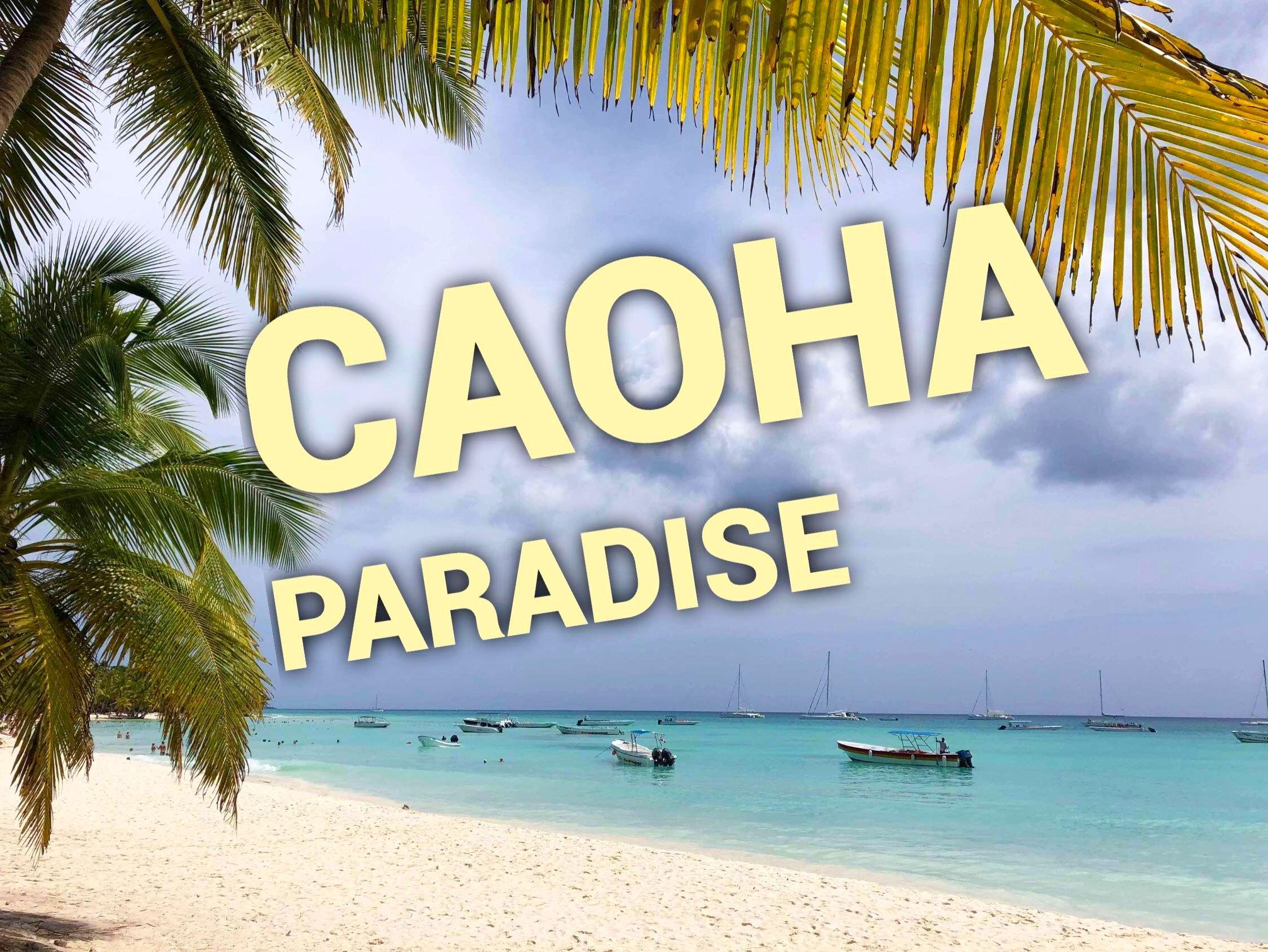 Саона Paradise от iDominicana.com: как проходит экскурсия. Видео