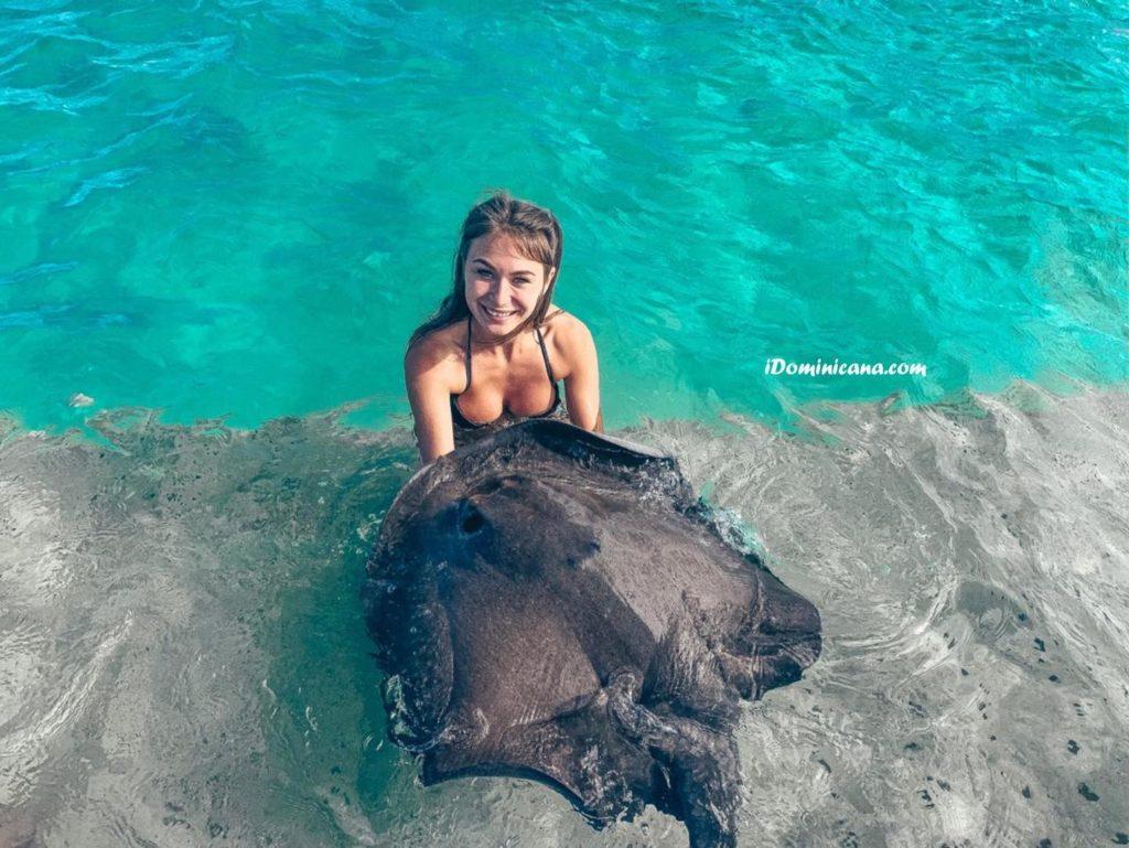 Купание с акулами и скатами - новые фото наших туристов