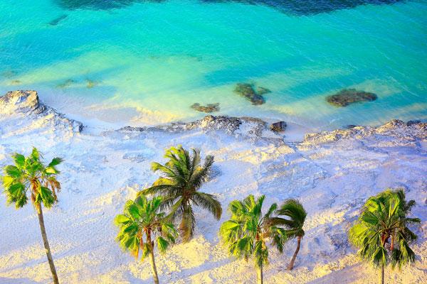 Билеты в Доминикану 2019: сколько стоят и когда выгоднее брать