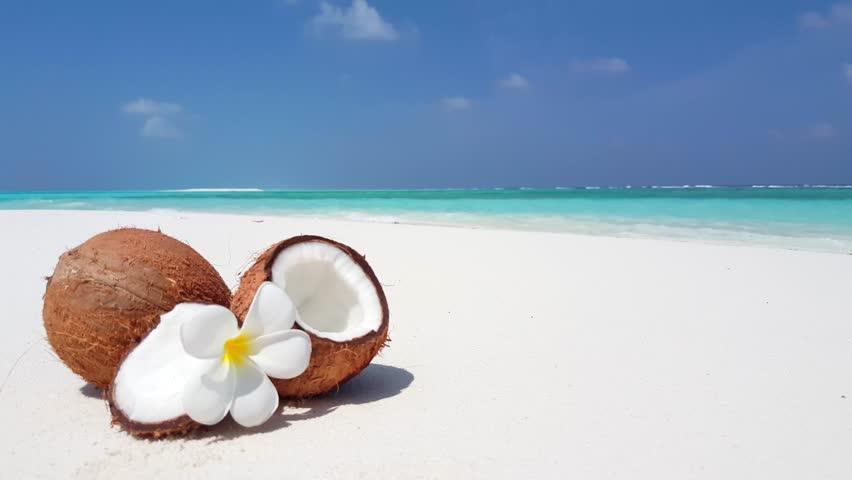 В Доминикане пройдет фестиваль кокосовых орехов