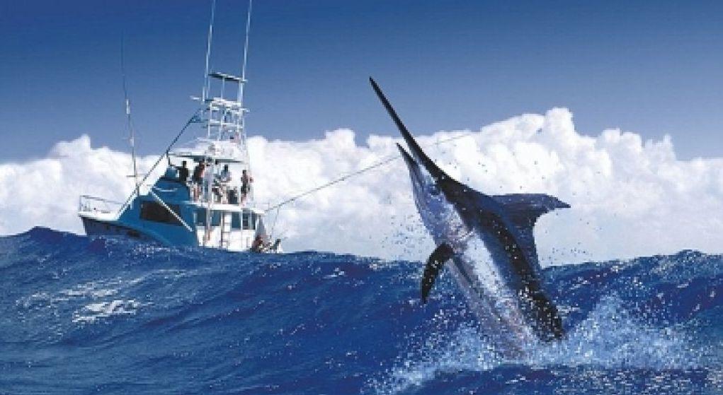 В Доминикане пройдет турнир по спортивной рыбалке Puntarena Sport Fishing Classic