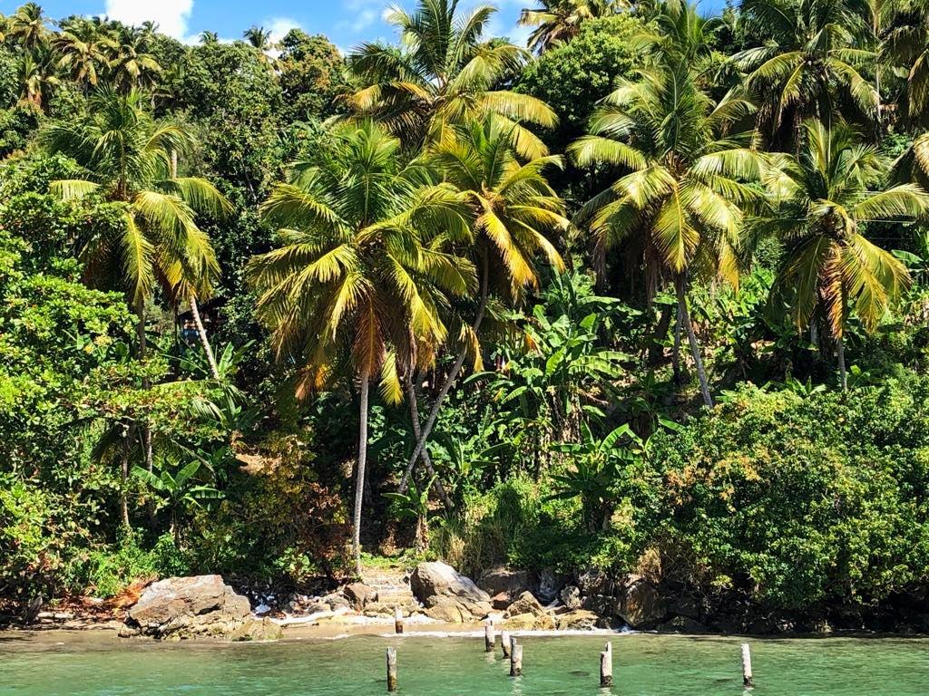 Землетрясение в Доминикане в сентябре - 4,5 балла