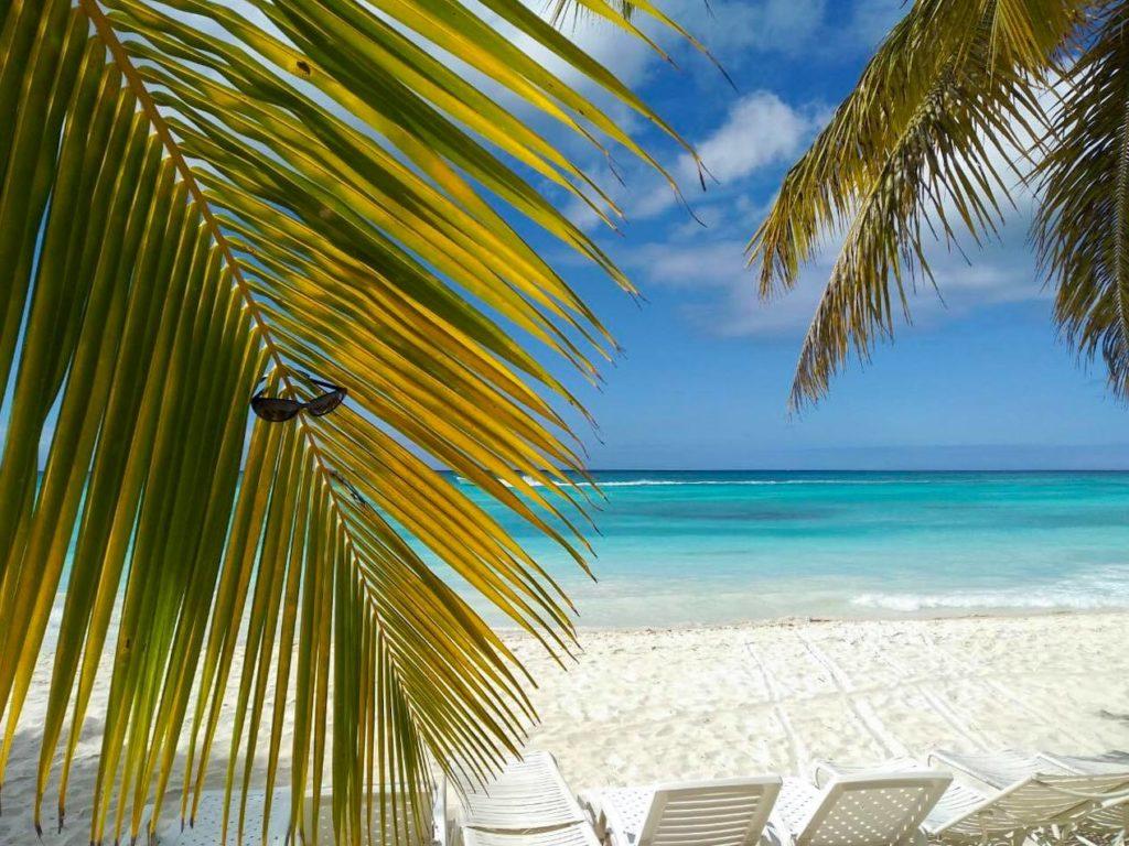 Рай на Земле – Доминикана: все, что нужно знать туристу iDominicana.com
