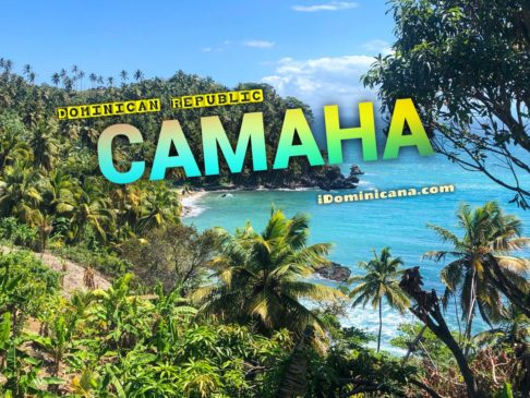 Полуостров Самана Доминикана: киты, пляжи, отели и многое другое