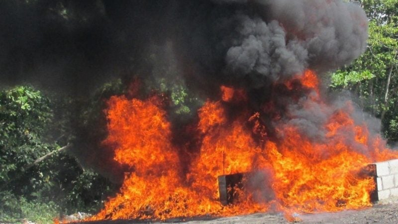 В Доминикане за неделю сожгли 119 кг изъятых наркотиков
