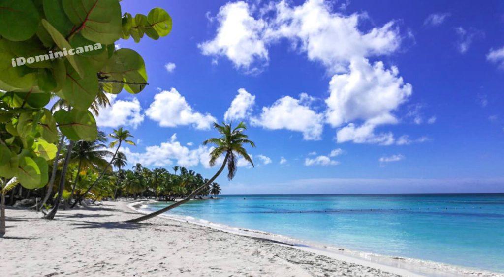 Доминикана в декабре: погода, температура воды, лучшие курорты