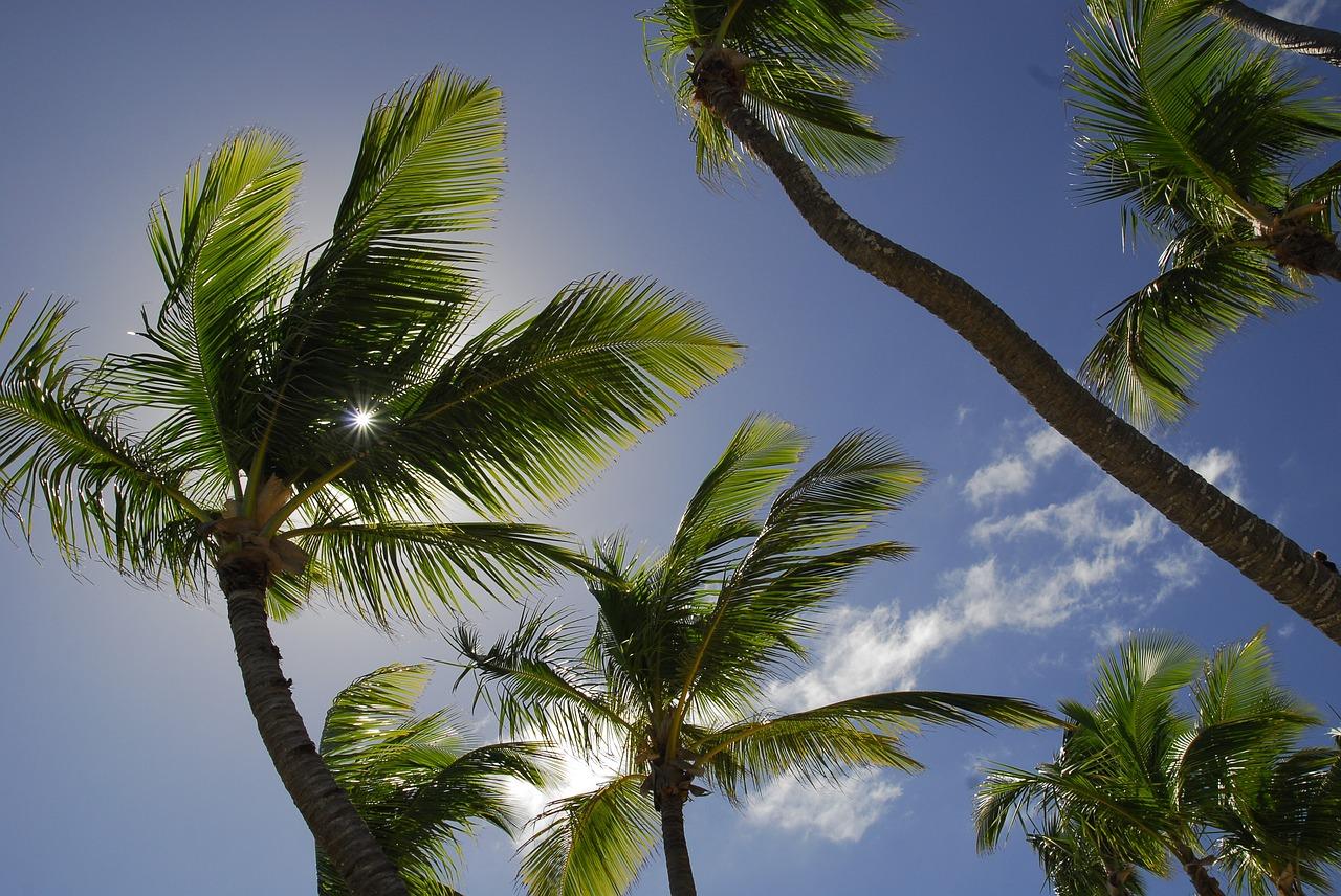 NASA: в Доминикане могут пройти разрушительные ураганы и землетрясения