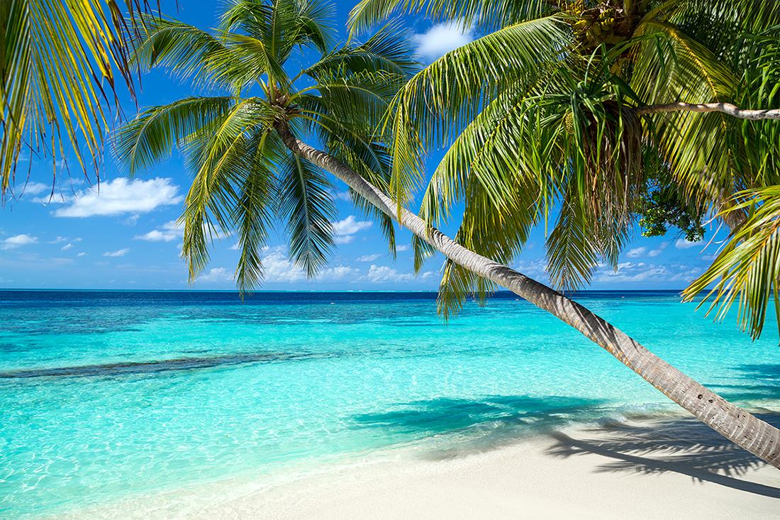 Эксперт: туризм в Карибском море несмотря ни на что будет развиваться