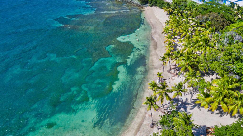 Playa Bachata и Senator Puerto Plata анонсировали даты открытия в Доминикане