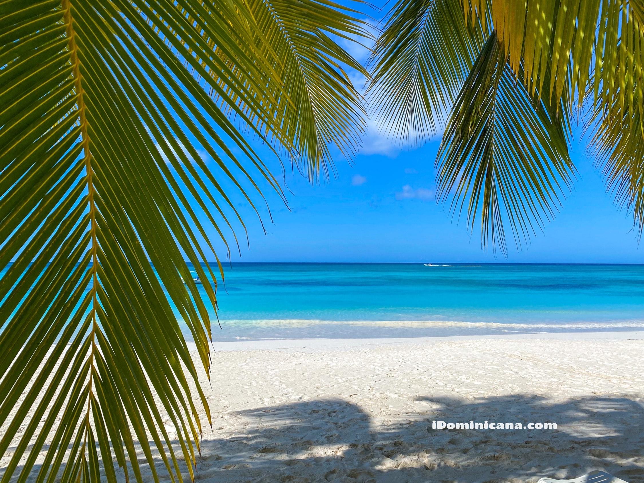 Бесплатная туристическая страховка в Доминикане