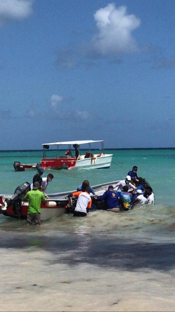 В Доминикане спасли детеныша кита, которого выбросило на берег