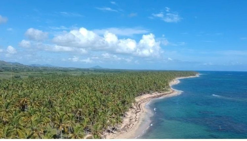 """Первый """"воздушный парк"""" на Карибах построят в Доминикане"""