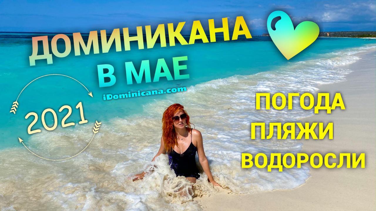 Доминикана в мае (видео): погода, пляжи, водоросли и мн.др.