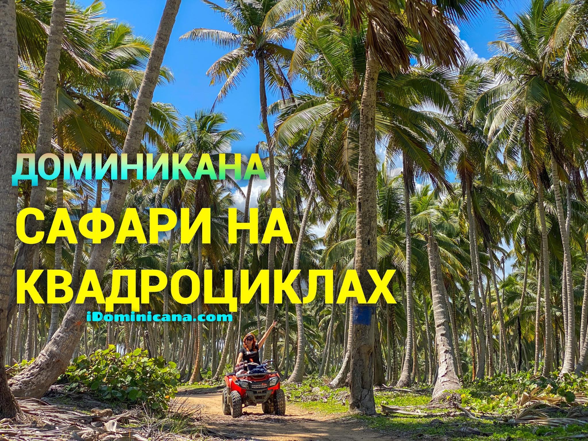 Экскурсия на квадроциклах в Доминикане: видео - iDominicana.com